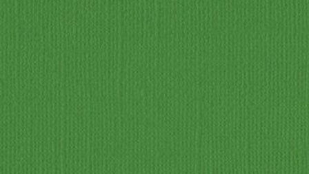 Down Under Cardstock - Grass Green pkt of 4 sheets