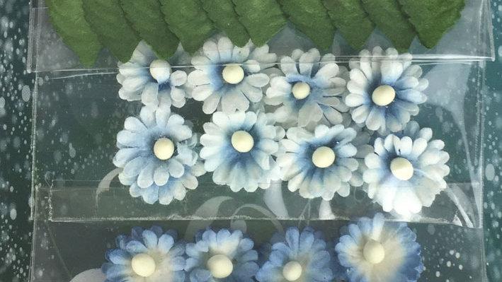 Green Tara mimosas and Leaves Bright Blue