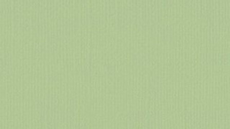 Down Under Cardstock - Mint Tulip 4 sheets