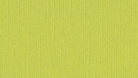 Down Under Cardstock - Lime 4 sheets