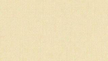 Down Under Cardstock - Almond Bisque 4 sheets