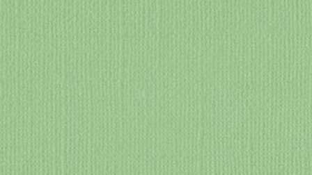 Down Under Cardstock - Spring Bud pk of 4 sheets