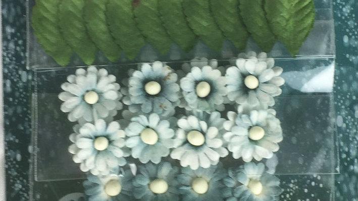 Green Tara mimosas and Leaves Blue