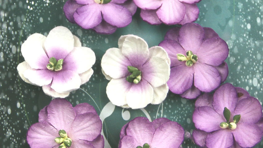 Green Tara Cherry Blossoms Lavender  10 pieces