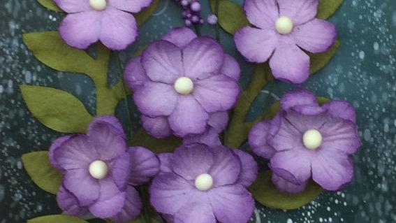Green Tara Primrose Collection Lavender