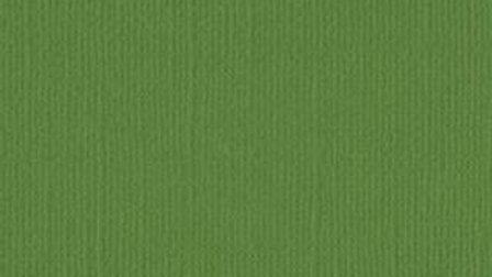 Down Under Cardstock - Mantis Pkt of 4 sheets