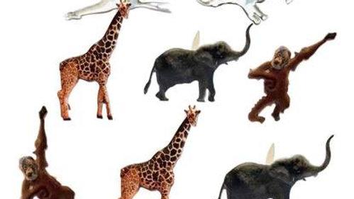 Jungle animal Brads 12  pieces