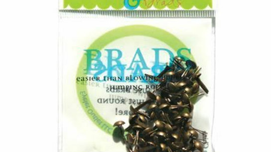 Brushed Brass  Brads 4 mm 70 pieces