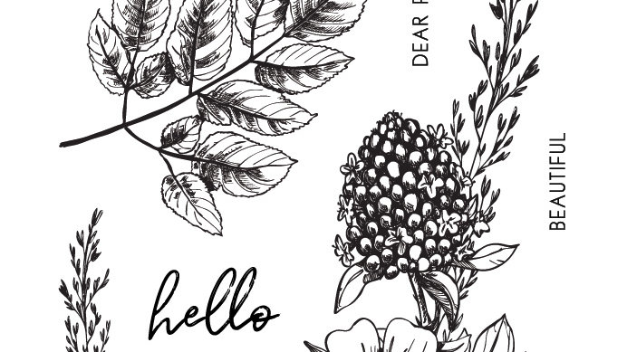 """Paper Rose Clear Stamp - Sketchy Floral Hello 4x6"""" Set"""