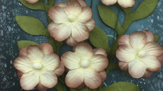 Green Tara Primrose Collection Beige