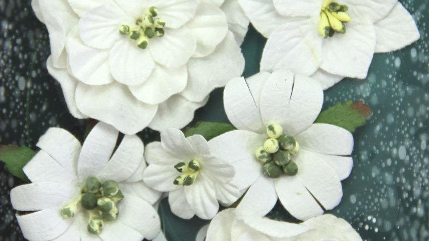Green Tara Fantasy Blooms White