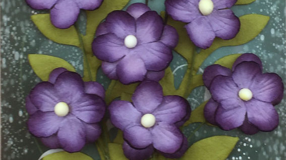 Green Tara Primrose Collection Purple