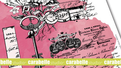 Carabelle studio A5 Stamp secret garden