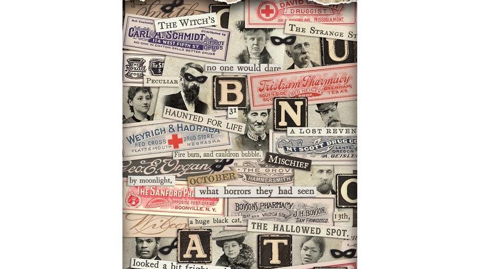 Tim Holtz Sticker Book - Curiosities