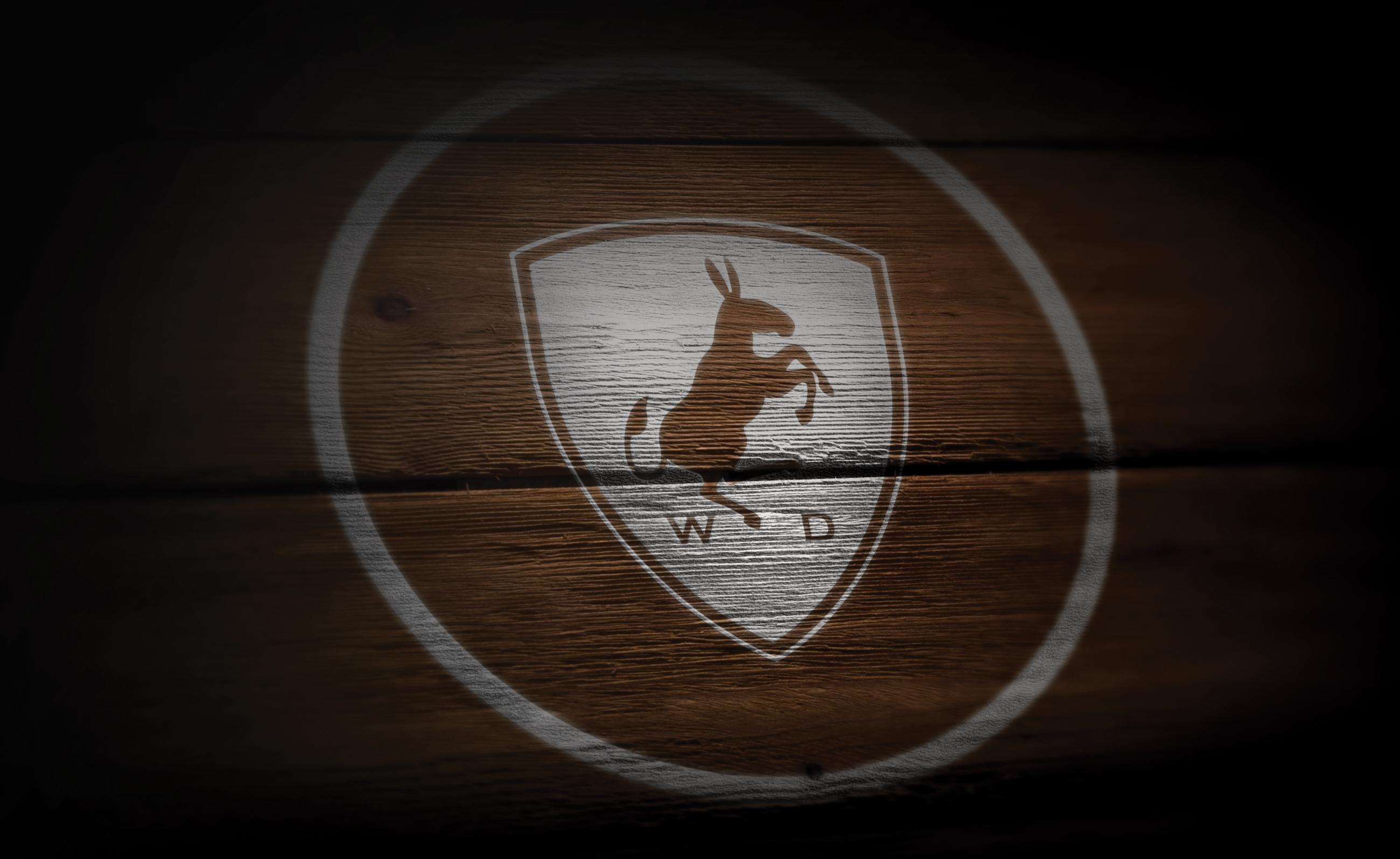 Логотип WD