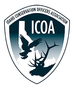 ICOA logo new clipped.png
