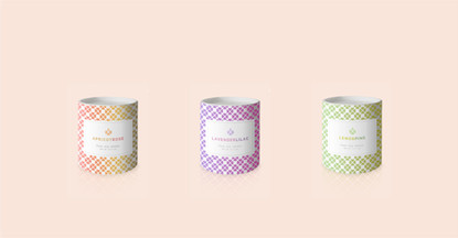 Candles Branding