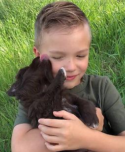 Chasin Tail Australian Shepherd's Pippin