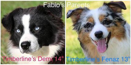 Fabio's Parents.jpg