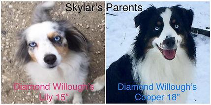 Skylar's Parents.jpg