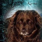 Karma 1.jpg