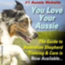 Aussie Ebook.jpg