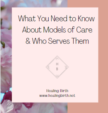 Modelsofcare1.PNG