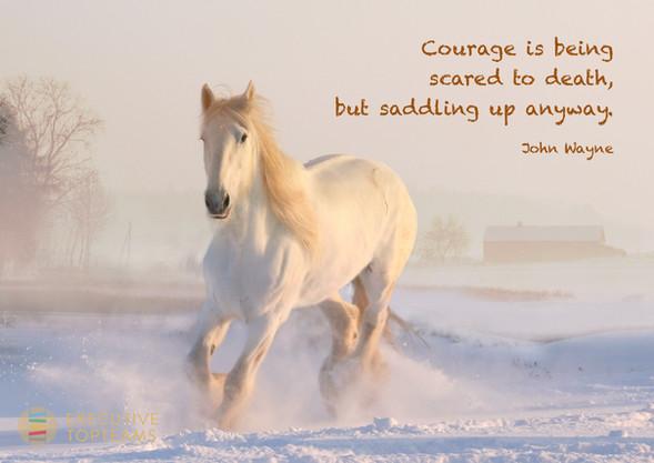 Courage John Wayne
