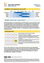 Eenvoudig MBTI Rapport