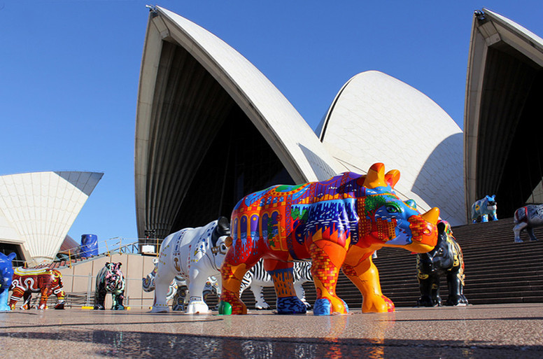 Nature of Industriousness - Taronga Wild! Rhinos, Sydney