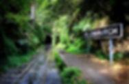 Gordons Bay - Bronte to Clovelly Walk