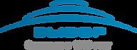 logo_vibor.png