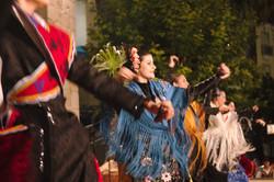 XVI Festival Nacional