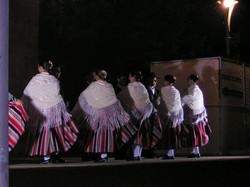 VI Festival Nacional