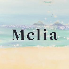 melia_image_2 logo.jpg