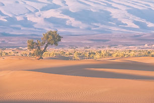 Morocco, Sahara._edited.jpg