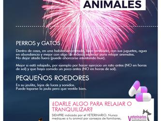 Animales y petardos