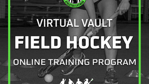 Virtual Vault Online Training