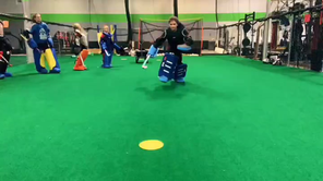 Goalkeeper Clinic
