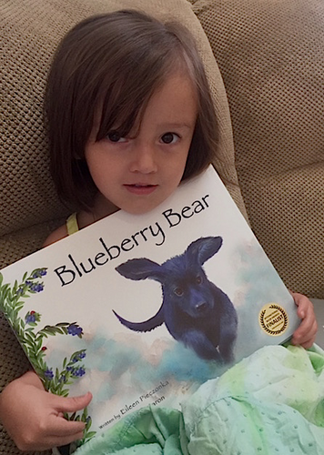 Blueberry Bear Fan