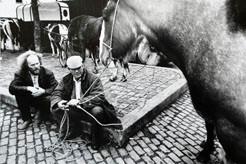 Mick Feeney: Smithfield Horse Fair, Dublin (1986)
