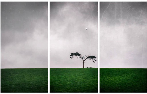 Aine Murphy: Fairy Tree
