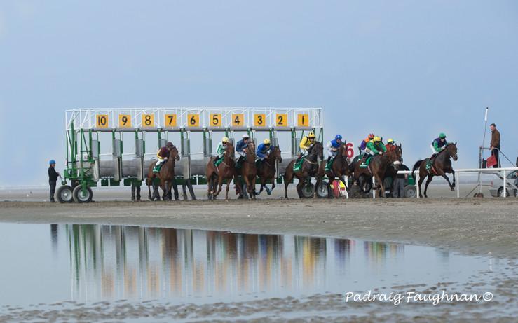 Padraig Faughnan: The Starter, Laytown Races
