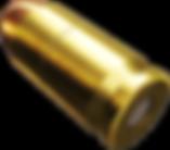 Canva - 3D Bullet Render (3).png