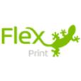 Flex print.png