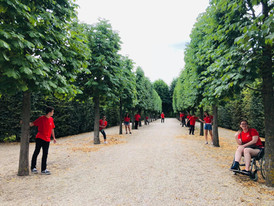 So many trees!