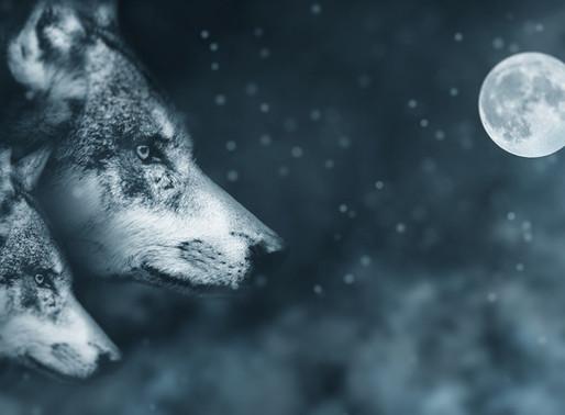 Full Moon Release!