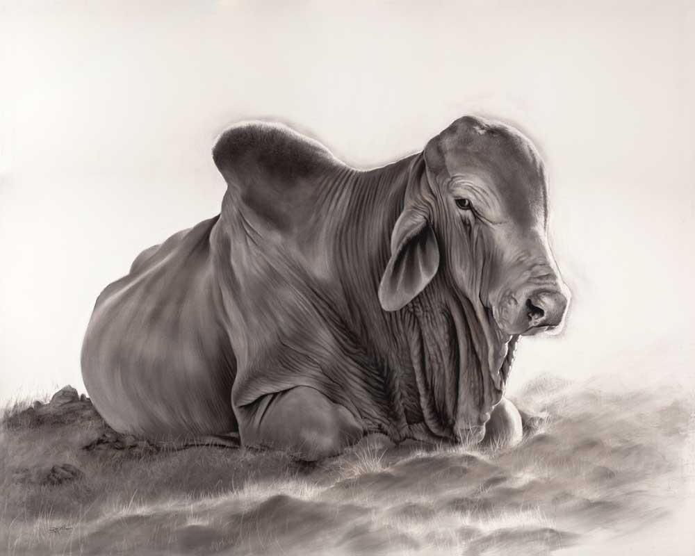 'Sitting Bull'