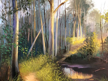 Magic-Forest-Light by Don Milner.mp4
