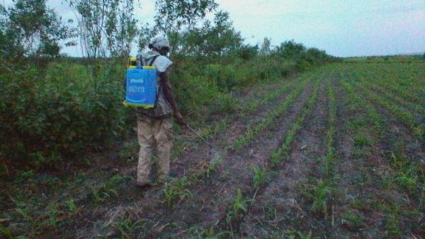 pulvérisation avec un fertilisant NANO A